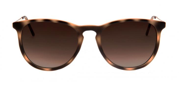 14efed768a751 Óculos para dirigir – Escolha o correto para cada momento ...
