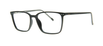 Lucca F1001 CLIP-ON  55 - C2