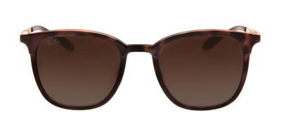 8c96c0318779b Óculos de Sol Ray-Ban Feminino - Modelos Óculos de Sol Ray-Ban ...